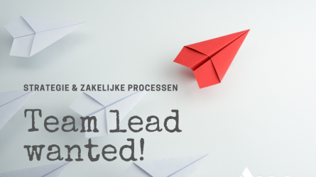 Vacature team lead 2019